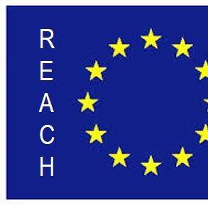 Europa REACH2
