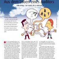 Aus dem Leben eines Auditors Fake Factory by Karl Metzger